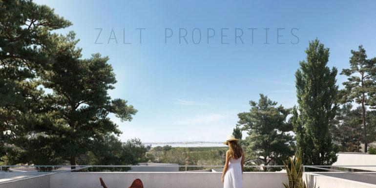 terraza-v05_def_preview